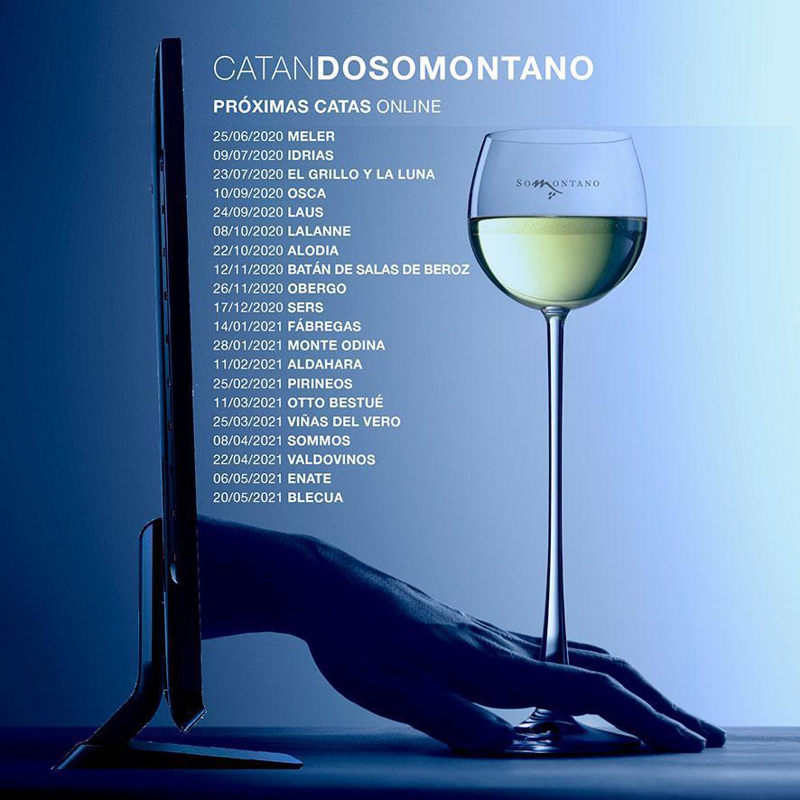 """CATANDO SOMONTANO. CATAS """"ON LINE"""""""