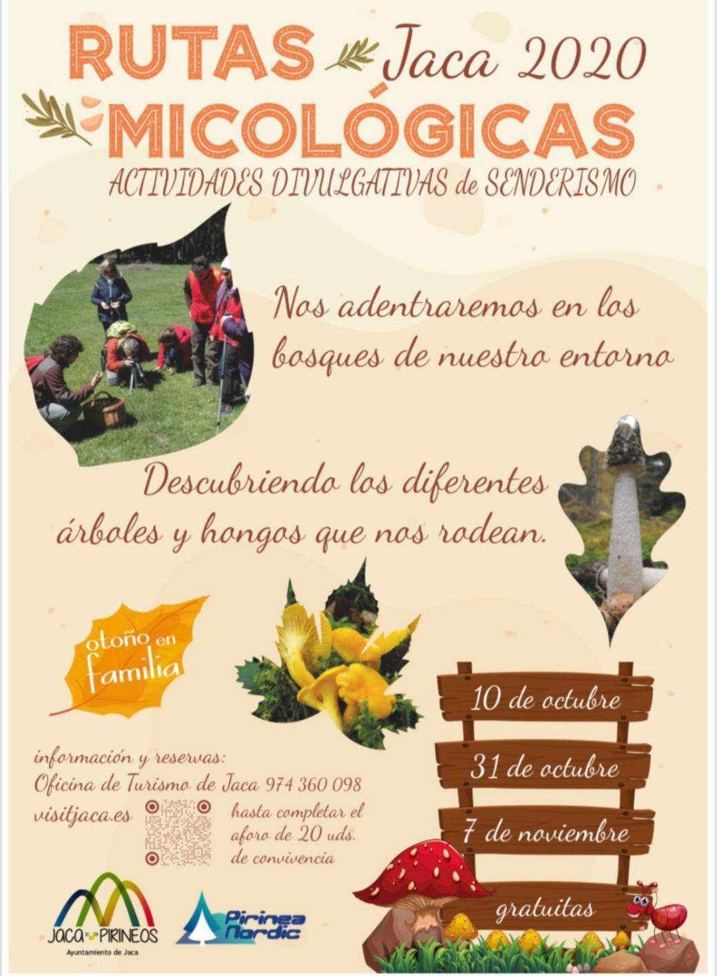 Rutas Micológicas en Jaca (Huesca)