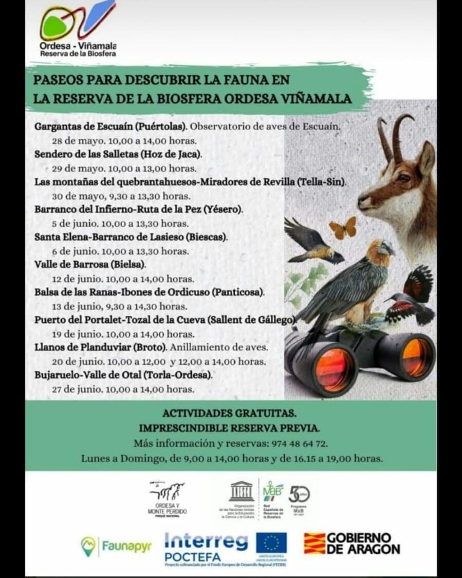 Descubre la fauna en la Reserva de la Biosfera Ordesa - Viñamala