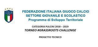 Pulcini 2008 di Mr Luzzatti @ #Grassroots Challenge (Fase 2, Short Story)
