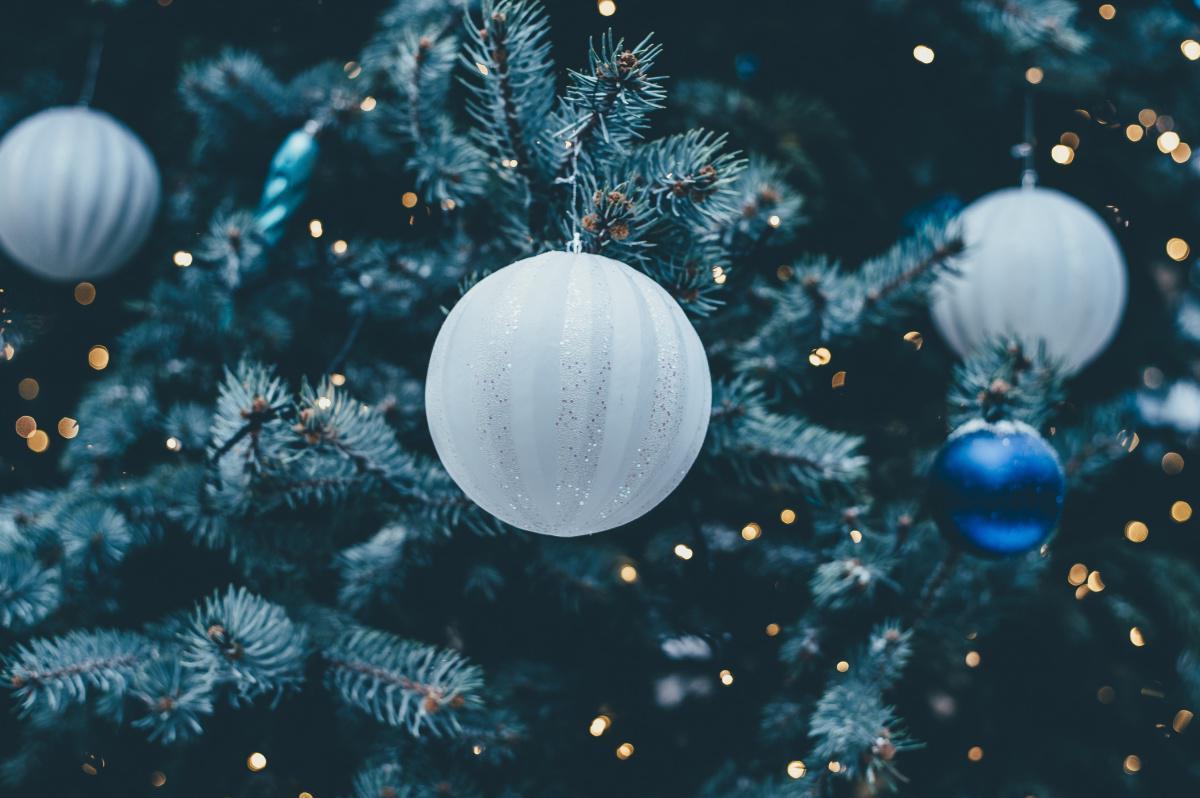 Auguri di Buon Natale dai...Mister!
