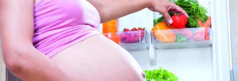 ALIMENTACIÓN Y NUTRICIÓN EN EL EMBARAZO Y EC. 1ª parte