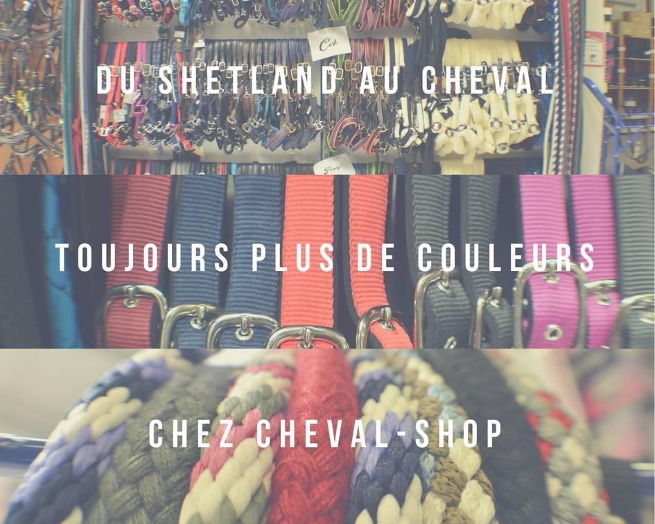 Cheval-Shop Villabé