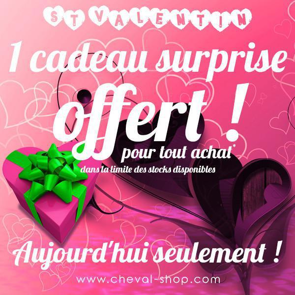 🥰🥰🥰 Joyeuse St Valentin ! Un cadeau offert ! ❤️❤️💘