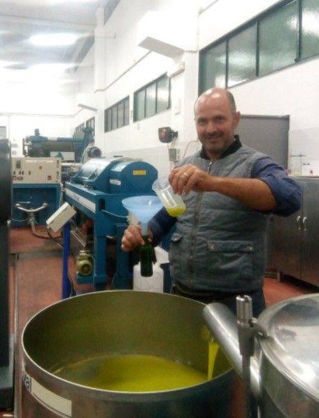 Adotta un olivo: Azienda Agricola Alfano