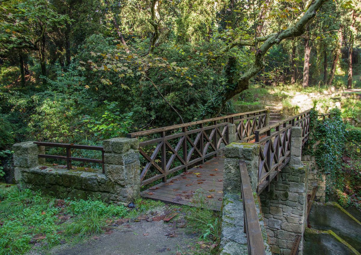 Rodini Park