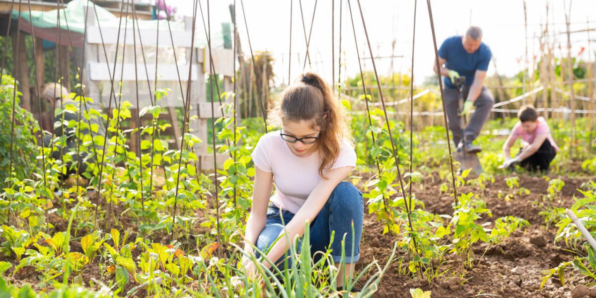 Find the Perfect Summer Volunteer Project