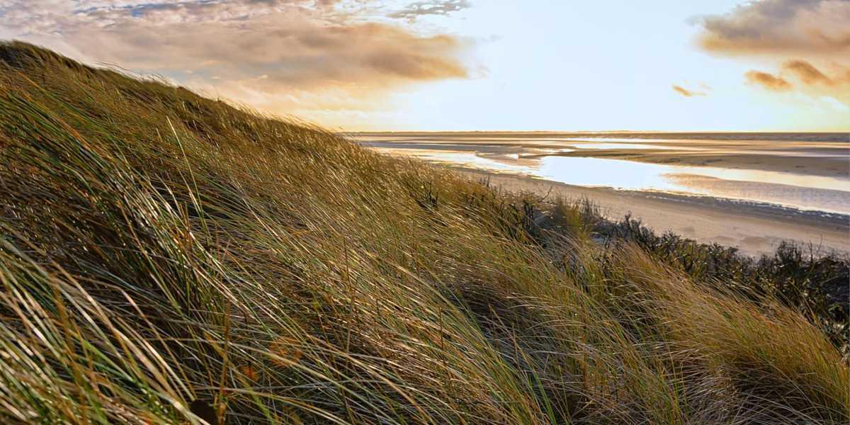 Parco regionale delle Dune Costiere