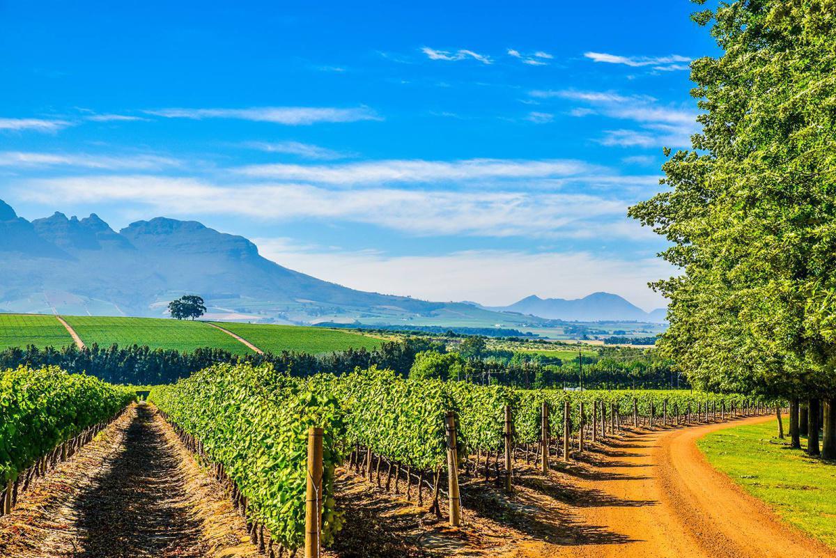 Travel Flash: Zuid-Afrika