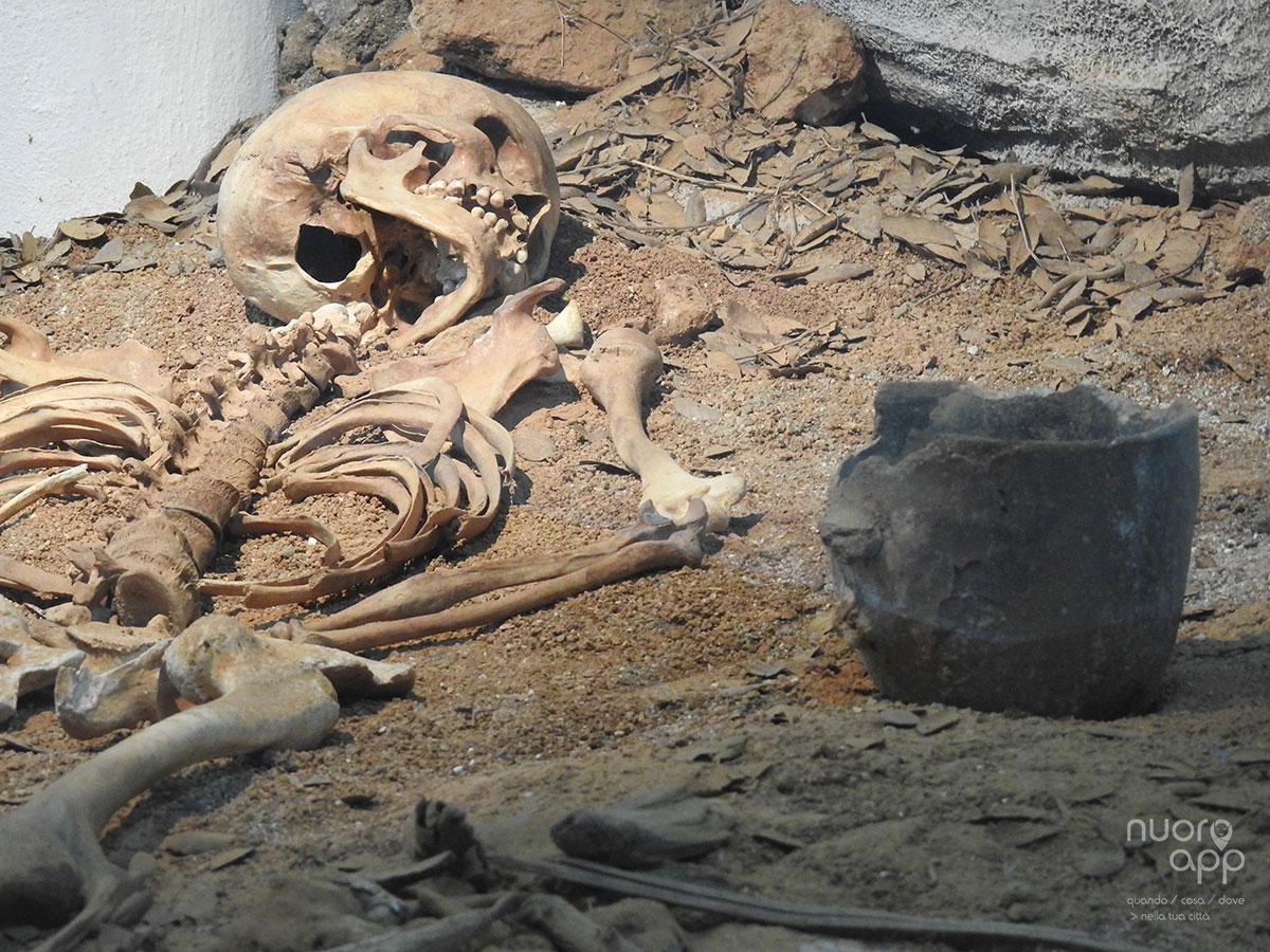 """Museo Archeologico Nazionale / Museo """"Giorgio Asproni"""""""