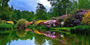 Interlude at Leonardslee Gardens