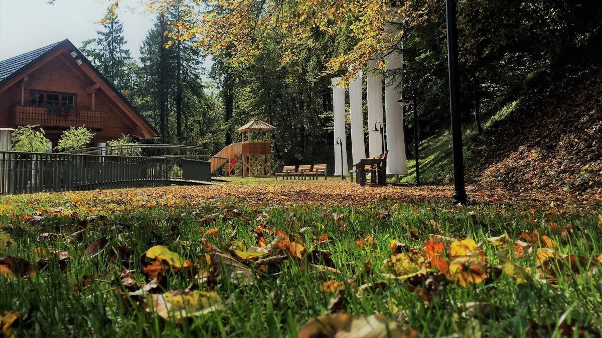 Jesen v našem parku