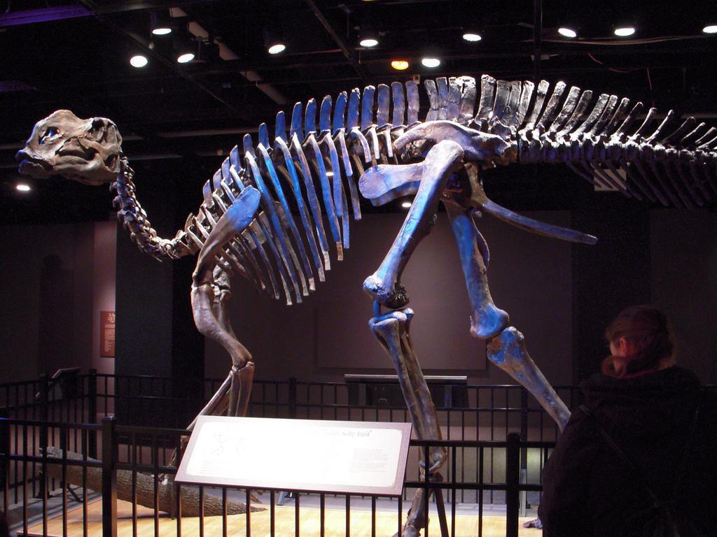 Hadrosaurus Foulki Leidy Site