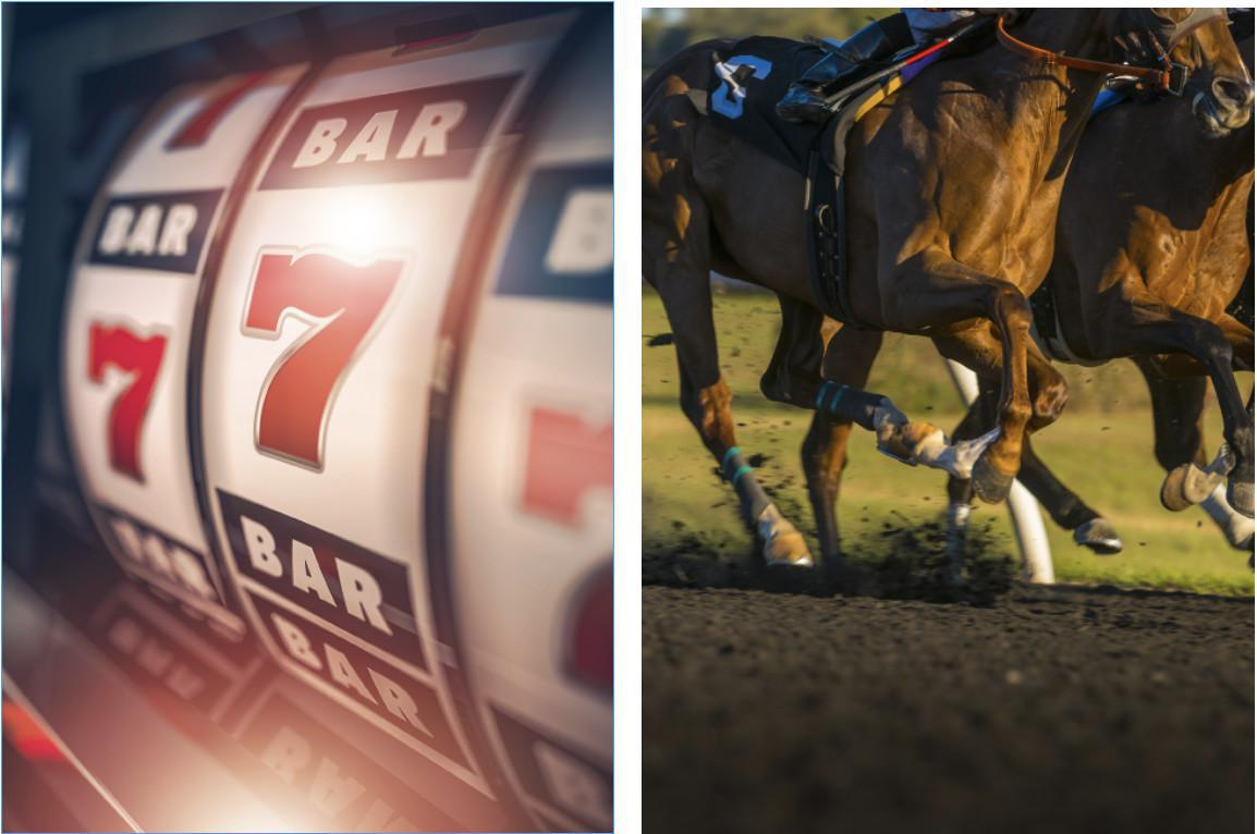 Top Casinos Racetracks & Sportsbooks in New Jersey