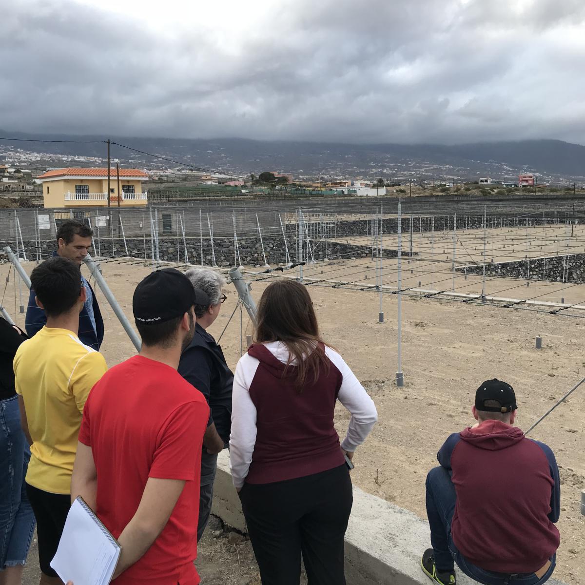 """El CIT de Güímar recibe a una delegación de la Academia de Verano - Seminario Internacional """"Buen Vivir"""": Paisaje de Bancales."""