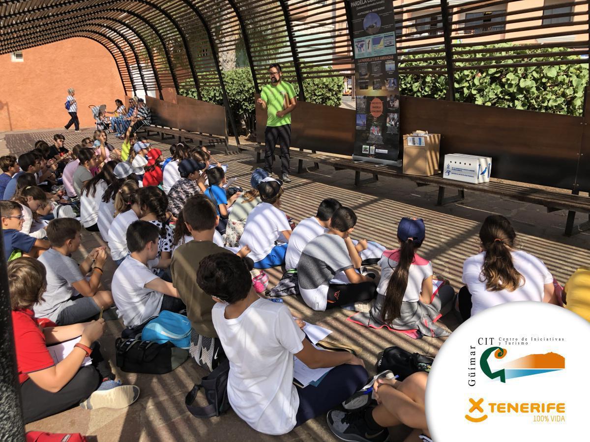 El CIT de Güímar fomenta la sensibilización turística entre los más jóvenes a través de diversas sueltas de pardelas cenicienta.