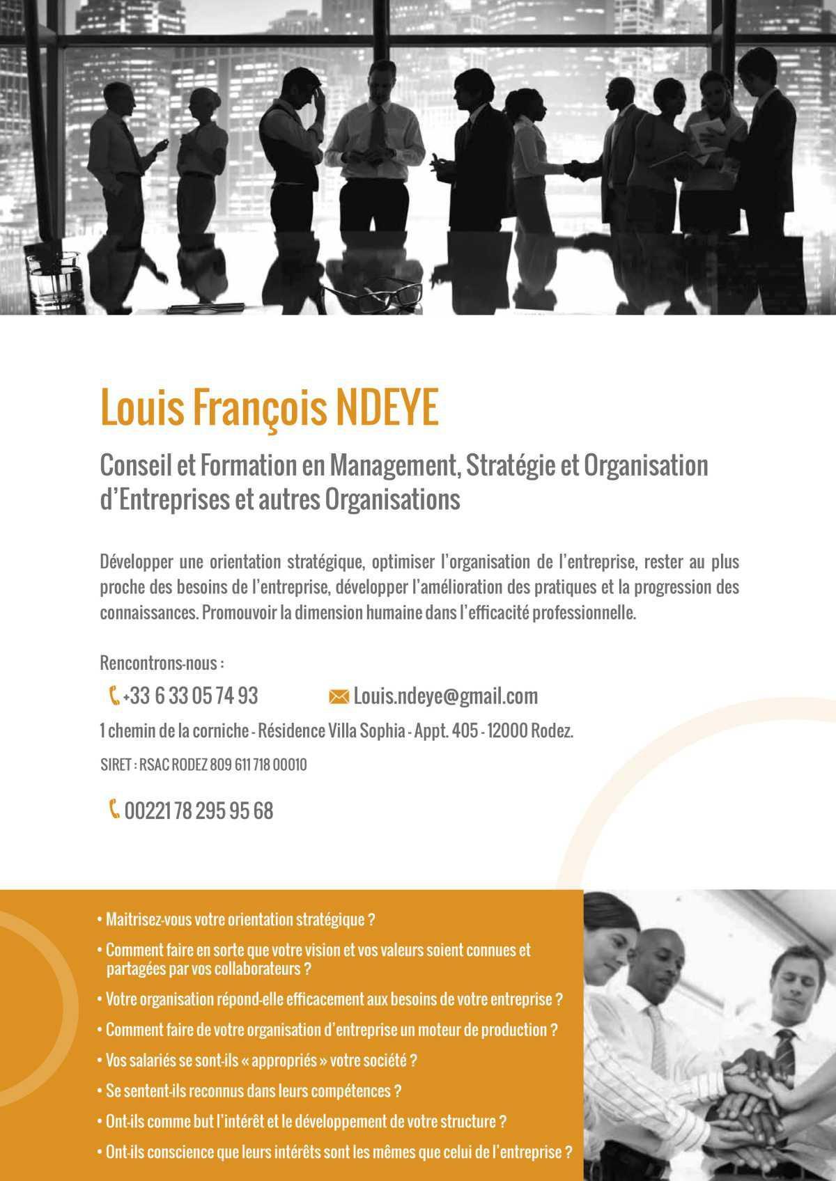 Louis François NDEYE, Conseil et Formation en Management, Stratégie et Organisation d'Entreprises et autres Organisations