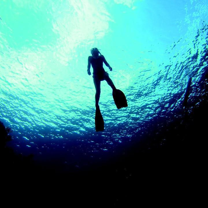 Soirée Estivale - Initiation à la plongée