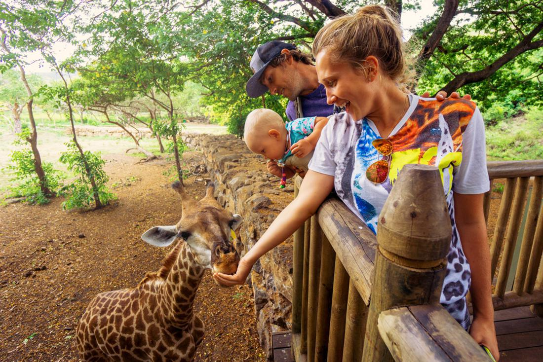 The Best Animal and Wildlife Parks in Mauritius!