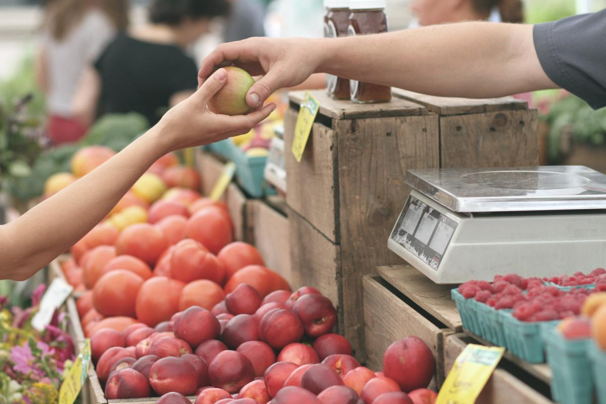 The Organic Farmers' Market is back this weekend!