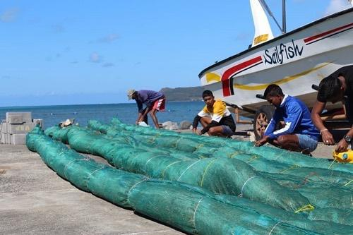 MV Wakashio: How the Mauritian Youth are living this environmental crisis!