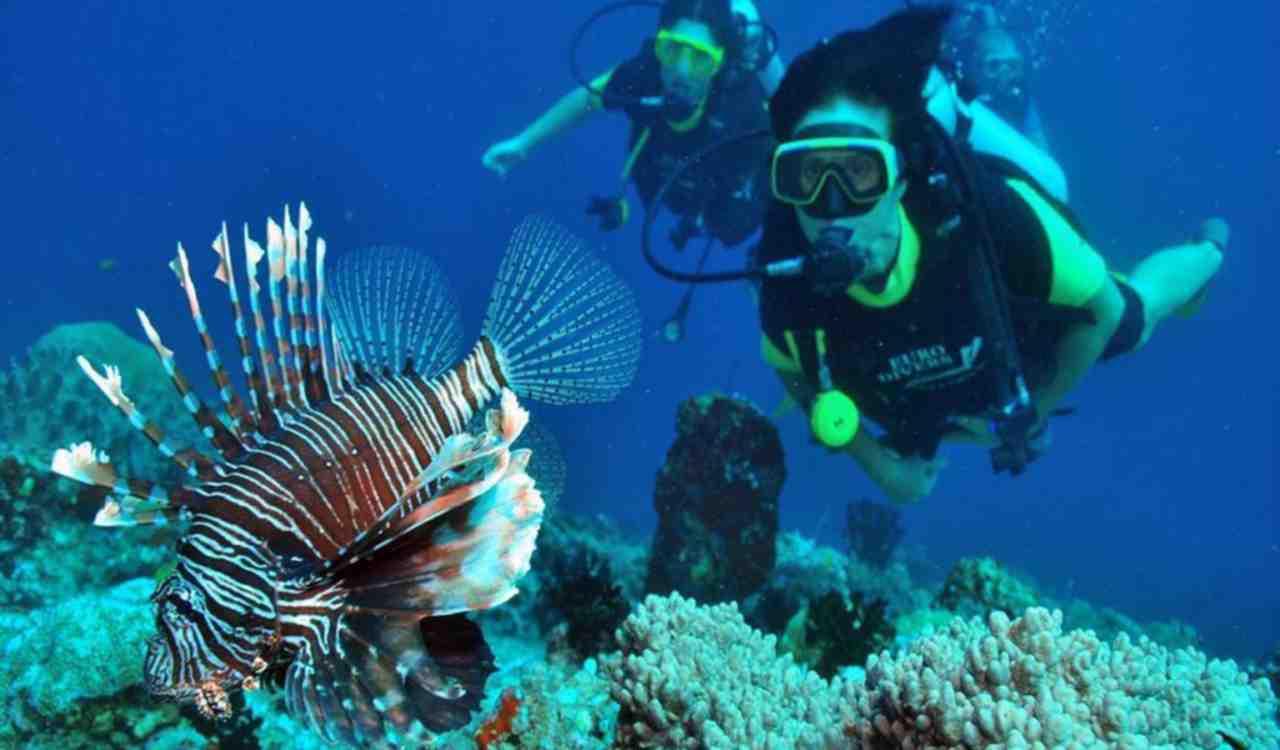 2-scuba-diving-mauritius-la-pointe-15-05-2015