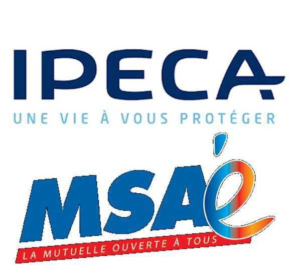 Résultat de l'élection des délégués à l'assemblée générale IPECA : FO, seule organisation à progresser !