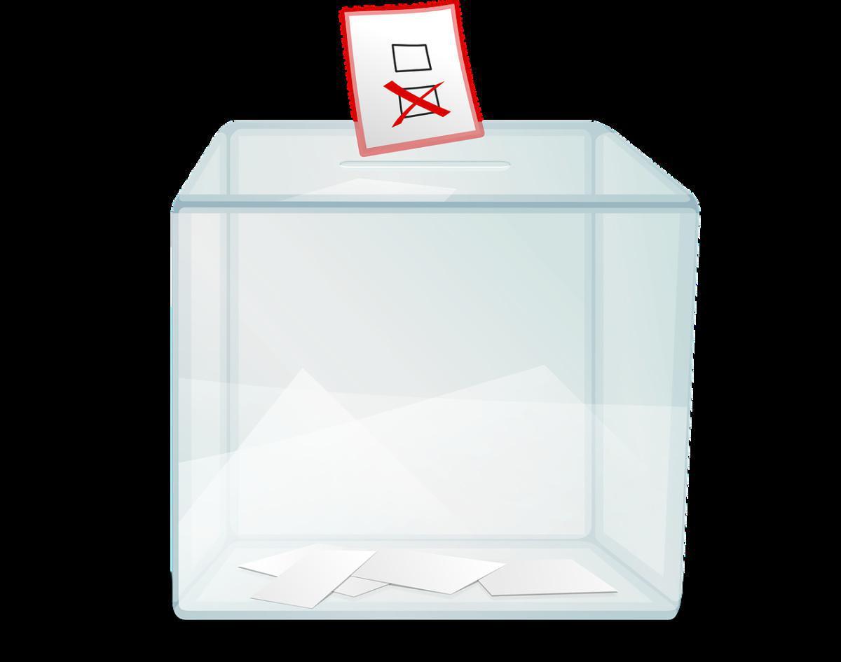 Election des délégués à l'assemblée générale