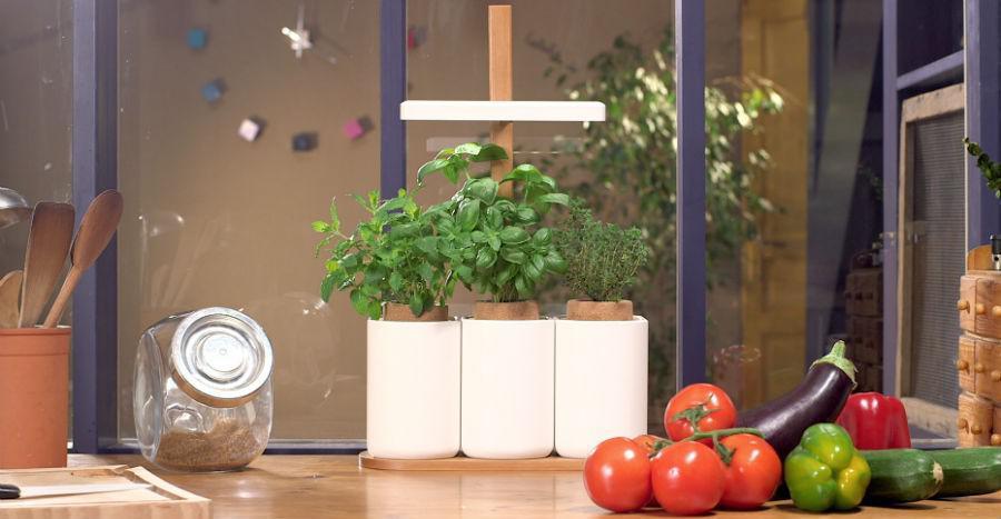 Prêt à pousser, un potager dans votre cuisine