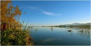 Journées mondiales des zones humides 2020