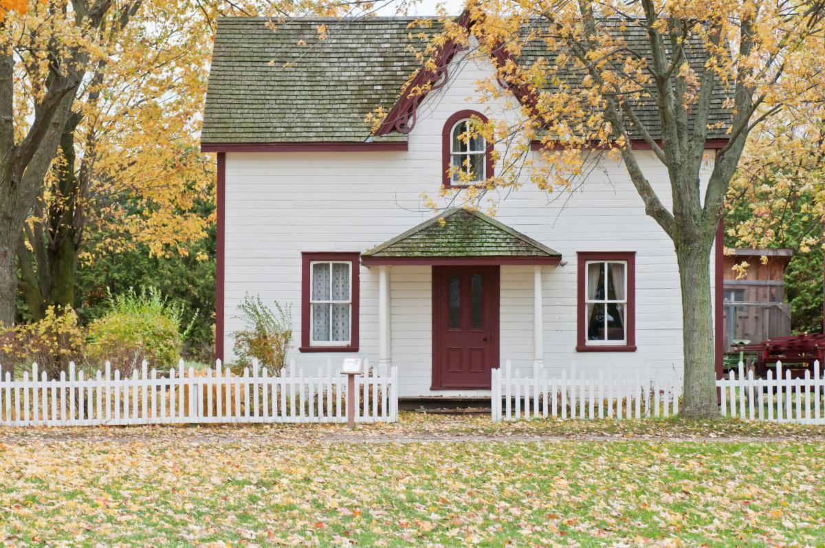 Assurance Habitation avec ou sans chien catégorisé.