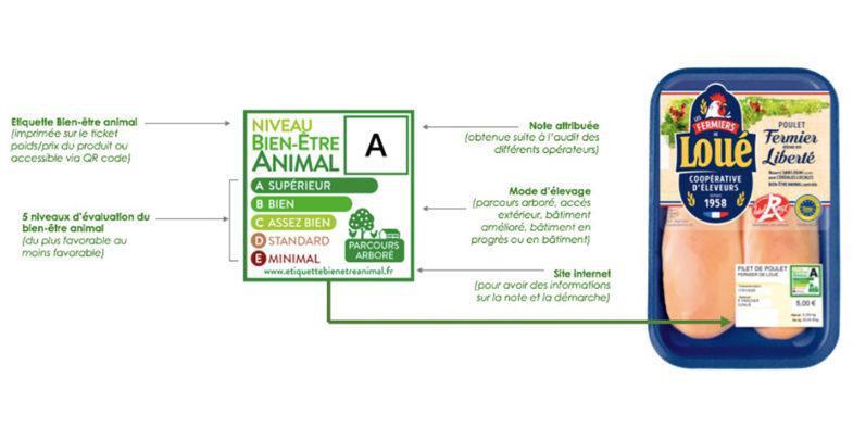 Système U et Carrefour rejoignent Casino dans une démarche d'étiquetage du bien-être animal