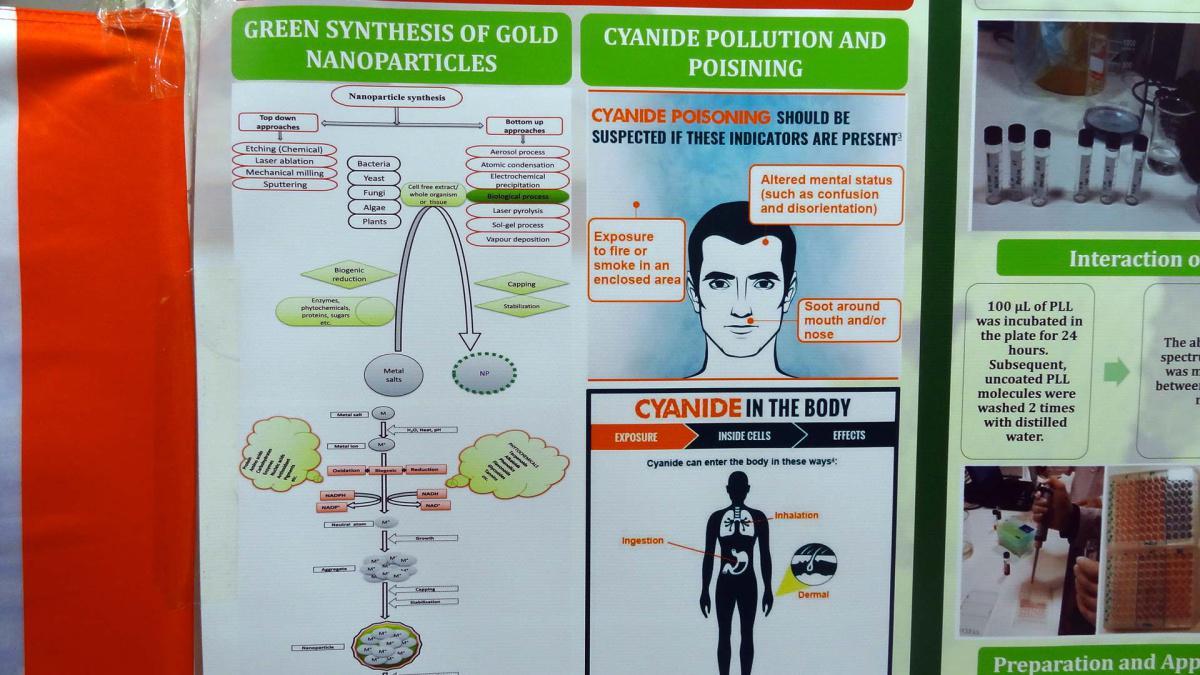 8. Sintesi verde di nanoparticelle metalliche come sensori di cianuro