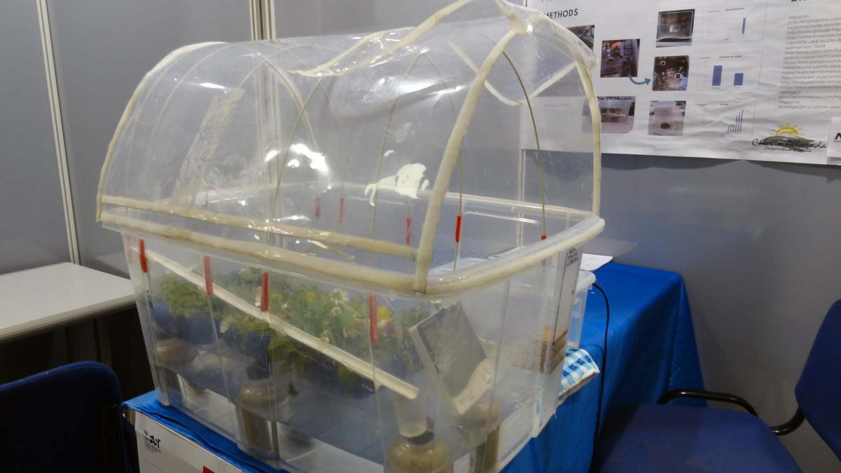 21. Serra ad irrigazione automatica con acqua di mare