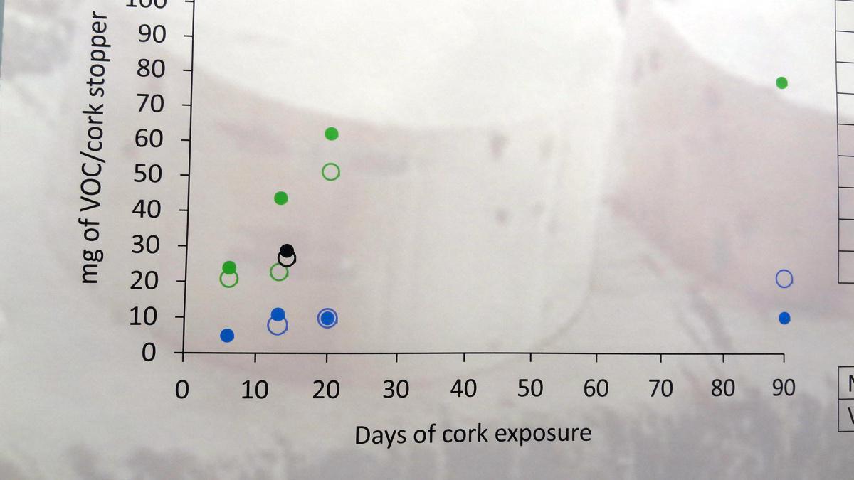 23. Sughero e composti organici volatili