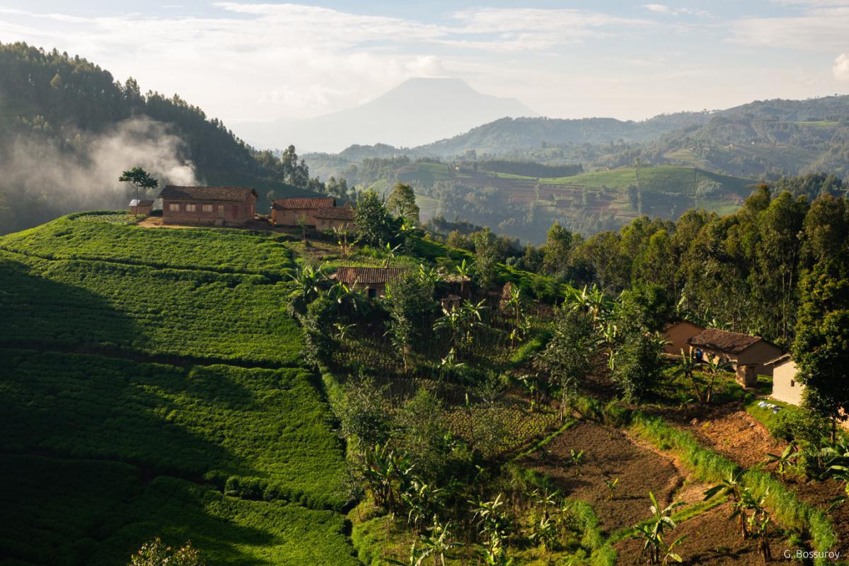 Paysages du Rwanda