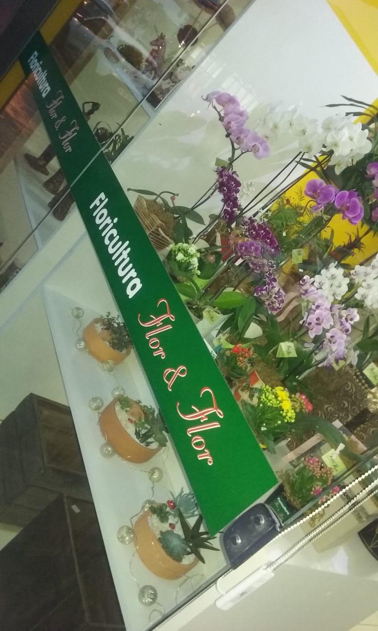 Floricultura Flor & Flor