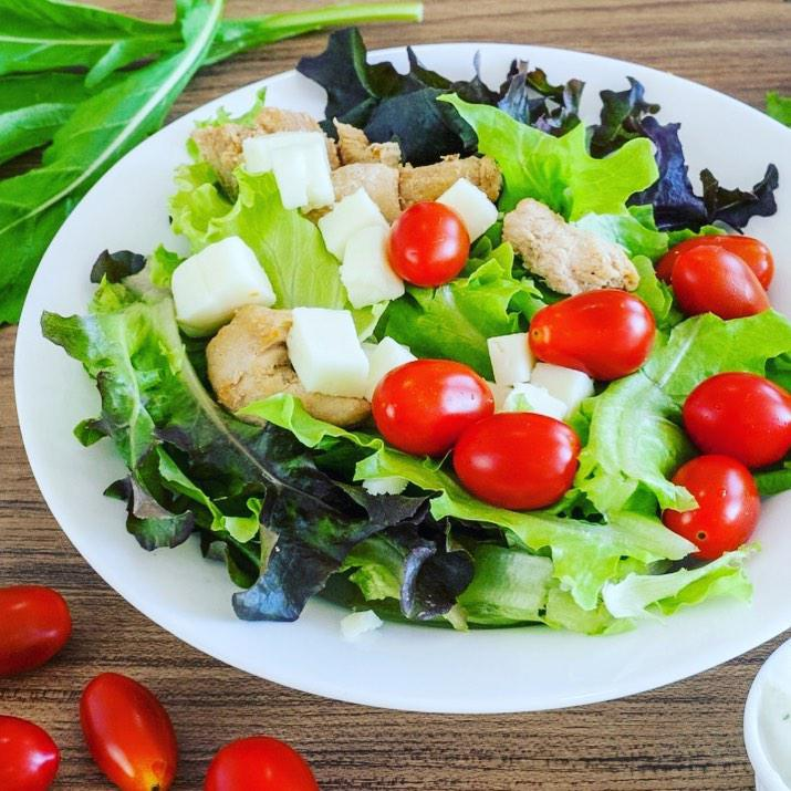 Lagarta Di Salada