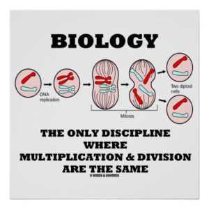6th year Biology