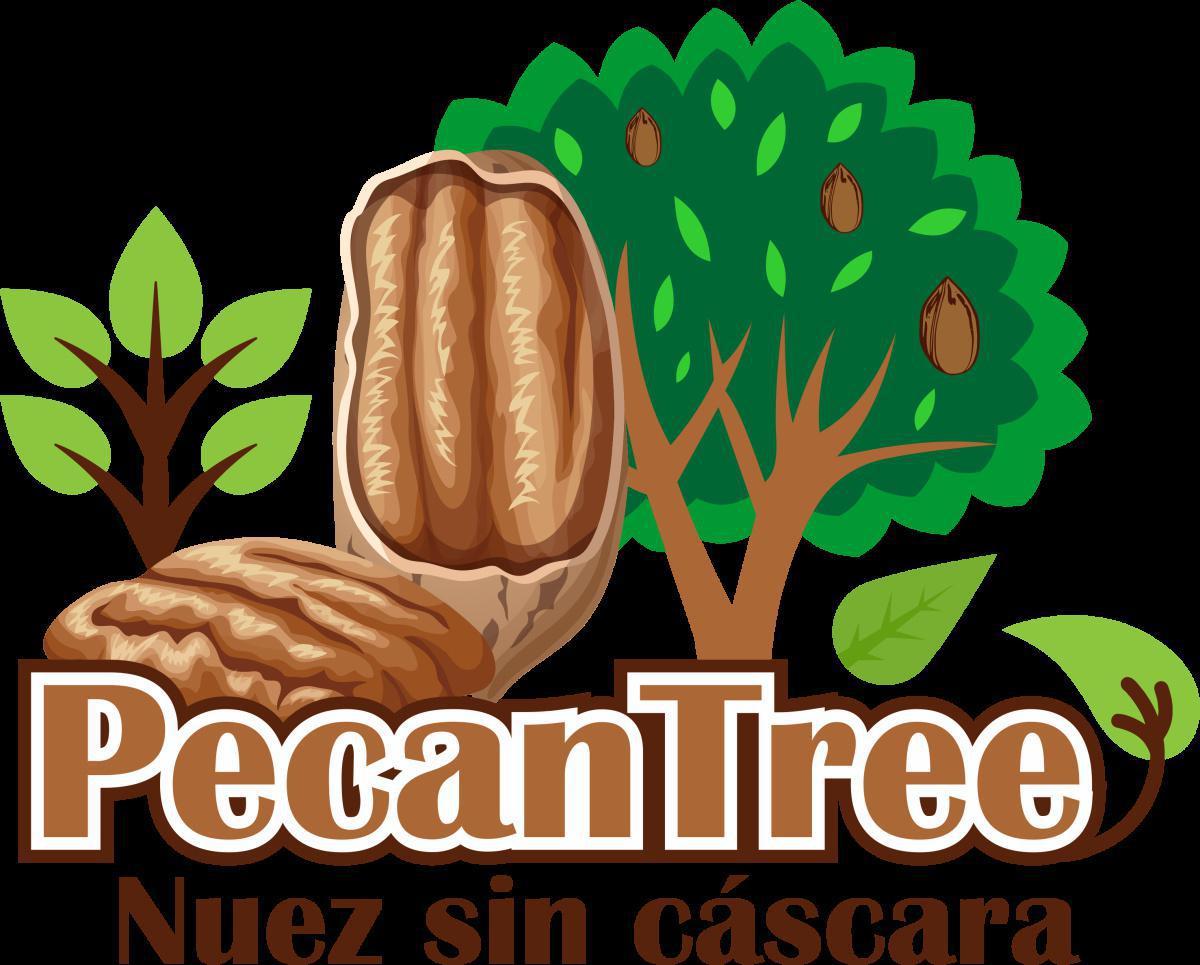 SOCIO CANACO