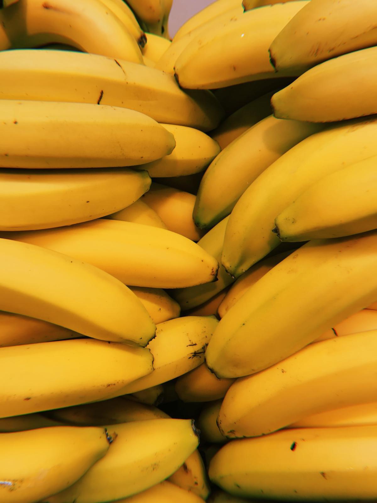 Filière banane antillaise