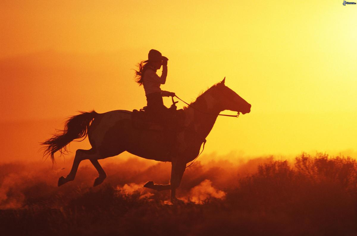 Uomo e cavallo: capirli e cercare di soddisfare le loro motivazioni