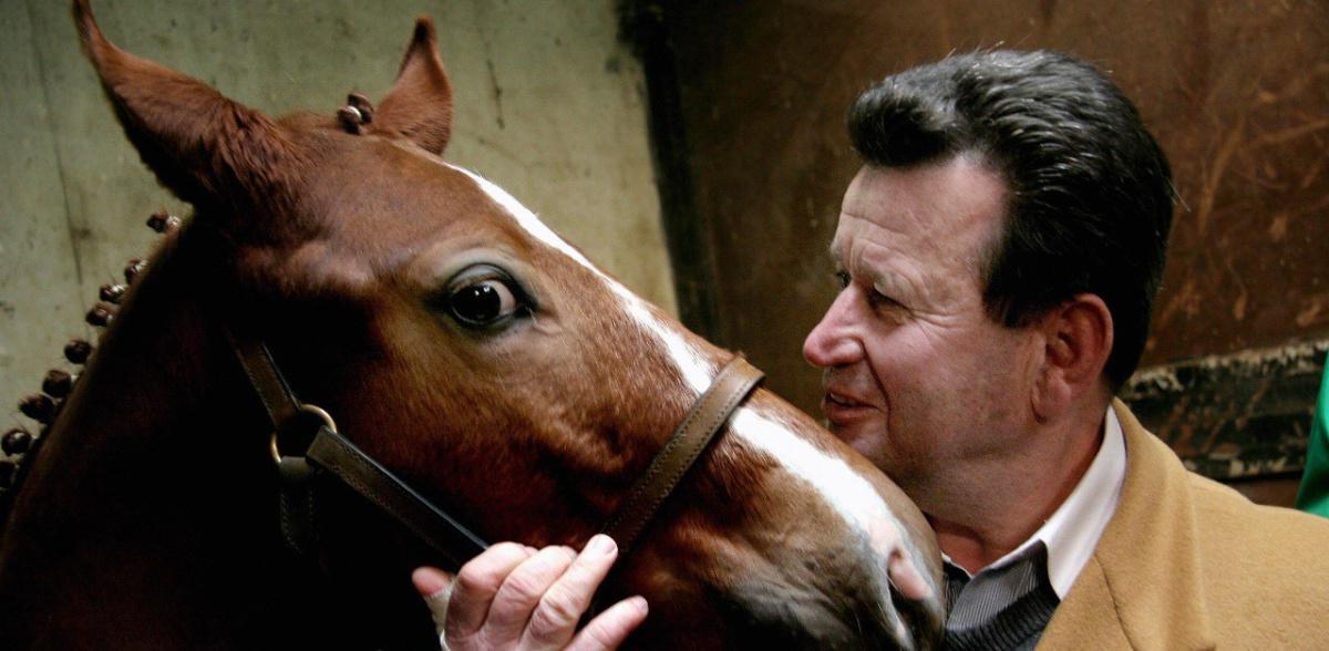 Il cavallo riconosce le emozioni umane