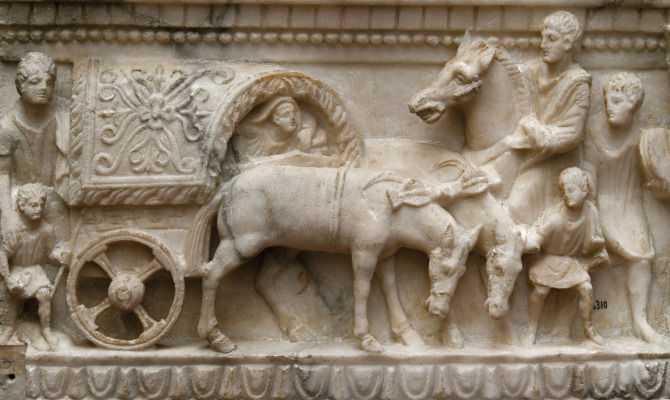 Quando la storia dell'uomo e del cavallo diventa cultura