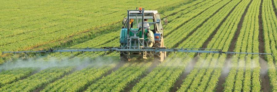 """Aggiornate le """"Norme tecniche per la difesa fitosanitaria ed il diserbo integrato delle colture"""" - anno 2021"""