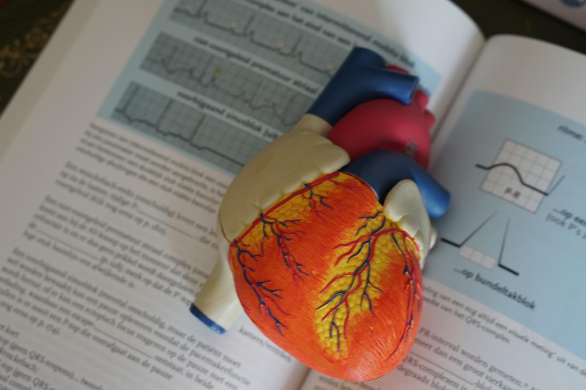 Corso Intensivo di Ecocardiografia
