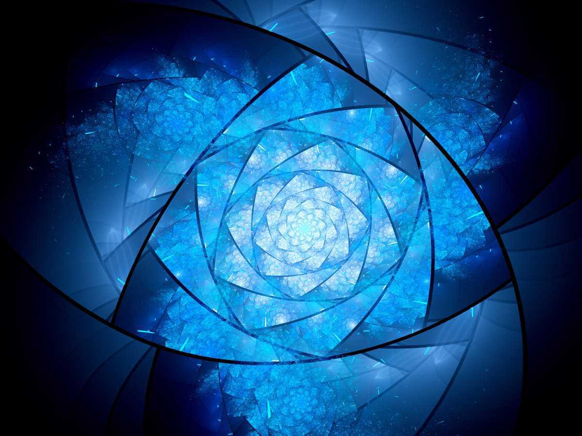 La vie sous l'angle kaléidoscopique