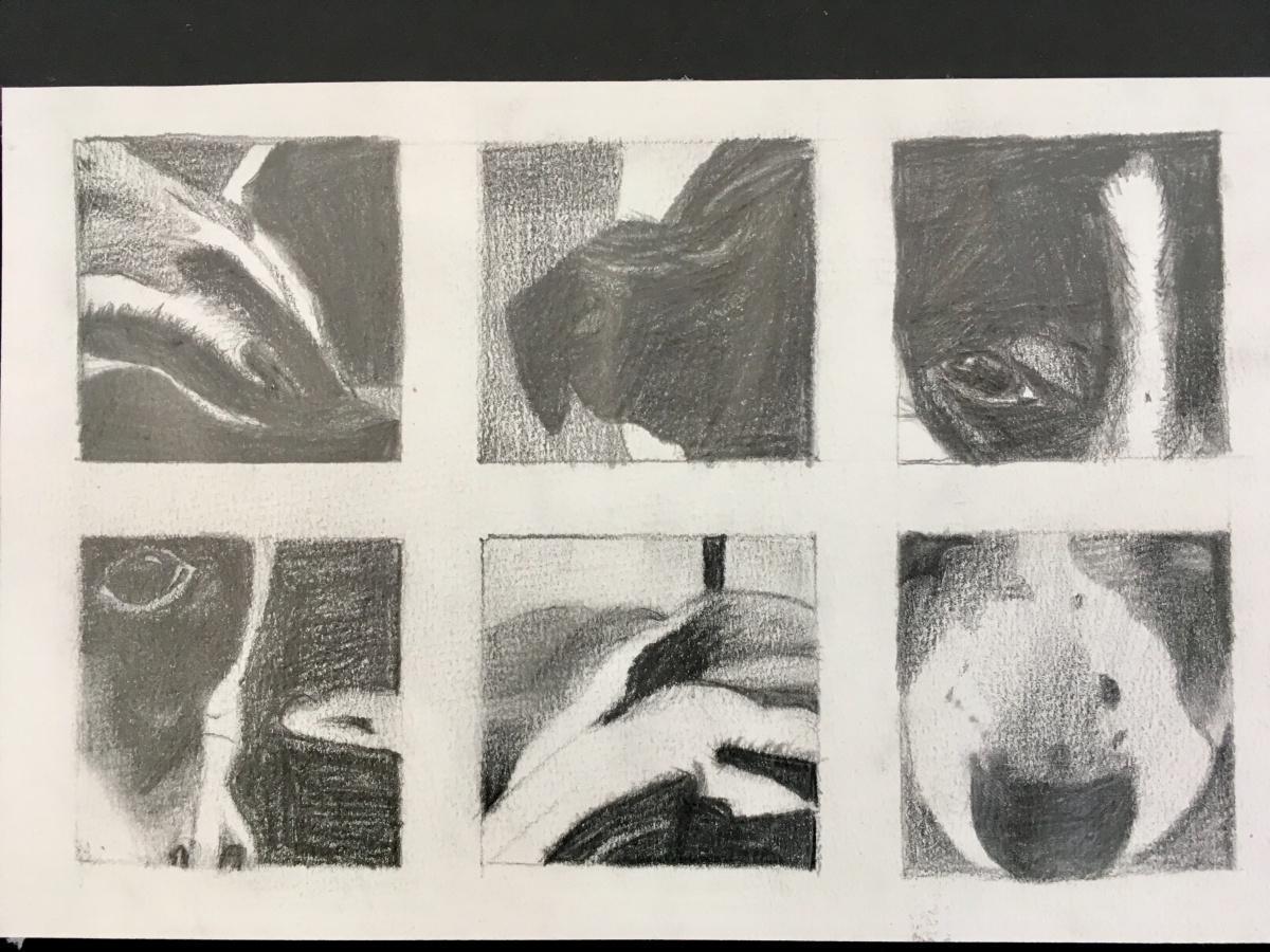 Einblicke ins Bildnerische Gestalten der Klasse SE3c