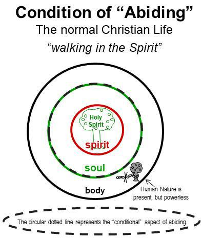 1-13 The Normal Healthy Christian's Primary Spiritual Development