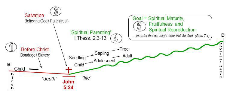 1-1 Overview of the Normal Christian Life